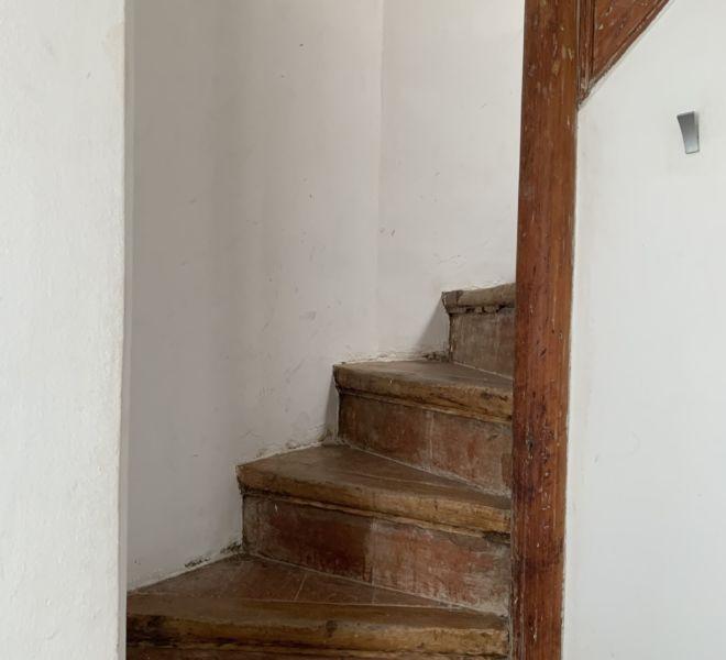 Gotico (3)